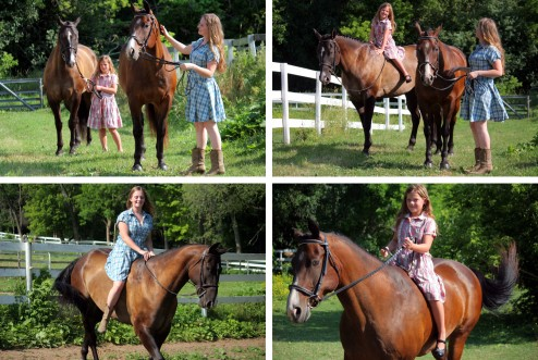 horse photo tips